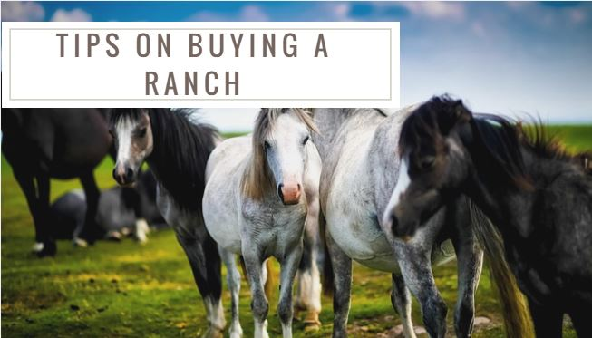 How to buy a ranch in Sedona